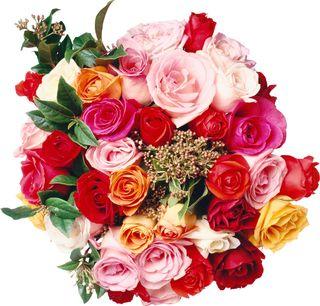 Flower4860